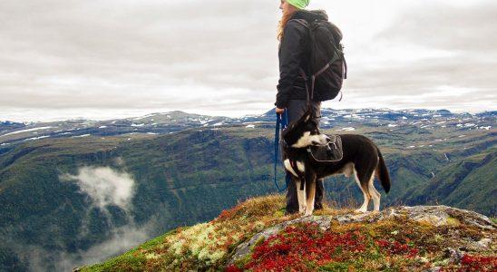une femme fait de la marche nordique avec son chien
